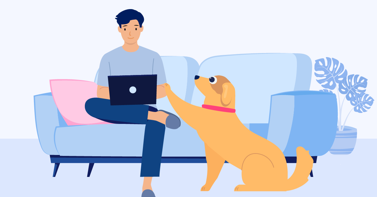 Going Back to Work? Here's How to Prepare Your Pet and Cope with Separation Anxiety